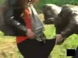 Sharking Rip Off Girls Skirts